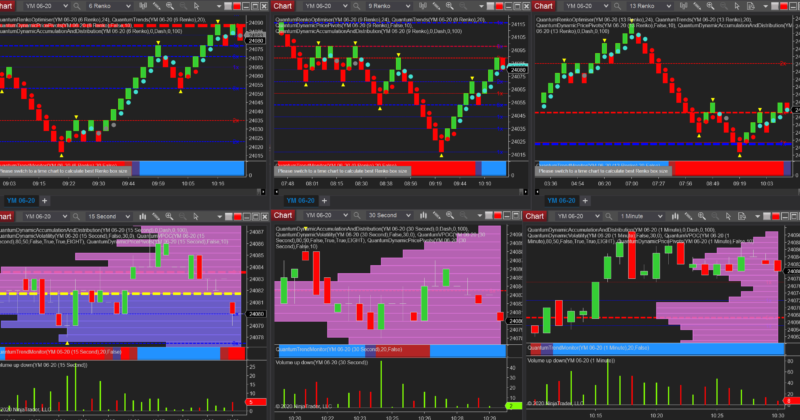 The renko optimizer for NinjaTrader delivers for index day traders
